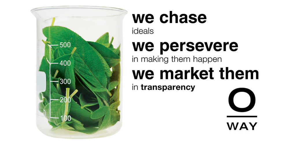 we chase ideals we persevere in making them happen we market them in transparency